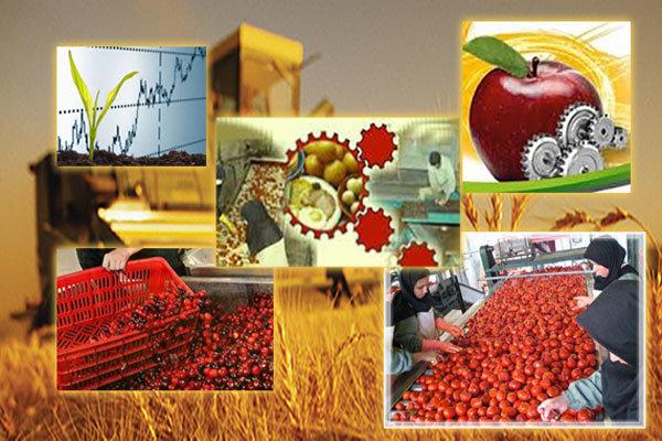 چرا صنایع تبدیلی در مازندران پا نمیگیرد؟