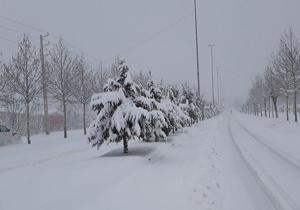 کیاسر رکوردار بارش برف