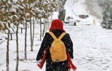 مدارس منطقه چهاردانگه روز دوشنبه 15 بهمن 1397 تعطیل شد