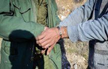 دستگیری ۲۹ شکارچی در پارک ملی کیاسر در سال گذشته