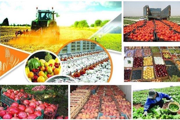 کارت زرد جهاد کشاورزی به ۶ فروشگاه سموم محصولات در آمل