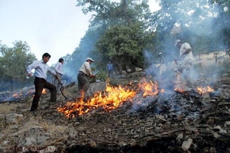استفاده از خدمات ۲مرکز اطفای حریق جنگل های مازندران لنگ تجهیزات است