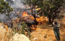 اعزام آتش نشانان چهار شهرستان به منطقه میانکاله