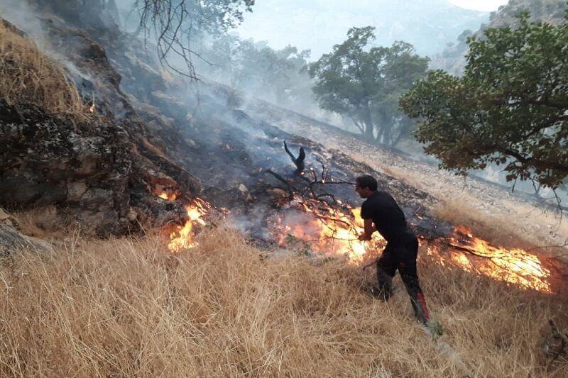 زنگ آتش سوزی مراتع مازندران به صدا در آمد