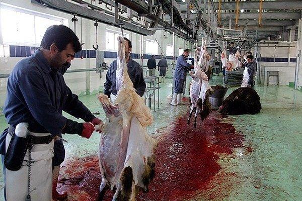 شرکت های مشترک تجاری ایجاد شود/ آمادگی برای تامین گوشت
