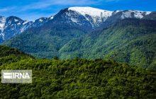 چالشهای حفاظت از جنگلهای هیرکانی مازندران از نگاه استاندار