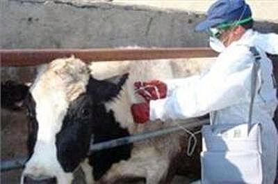 کمبود یکصد نیروی کاردان در دامپزشکی مازندران