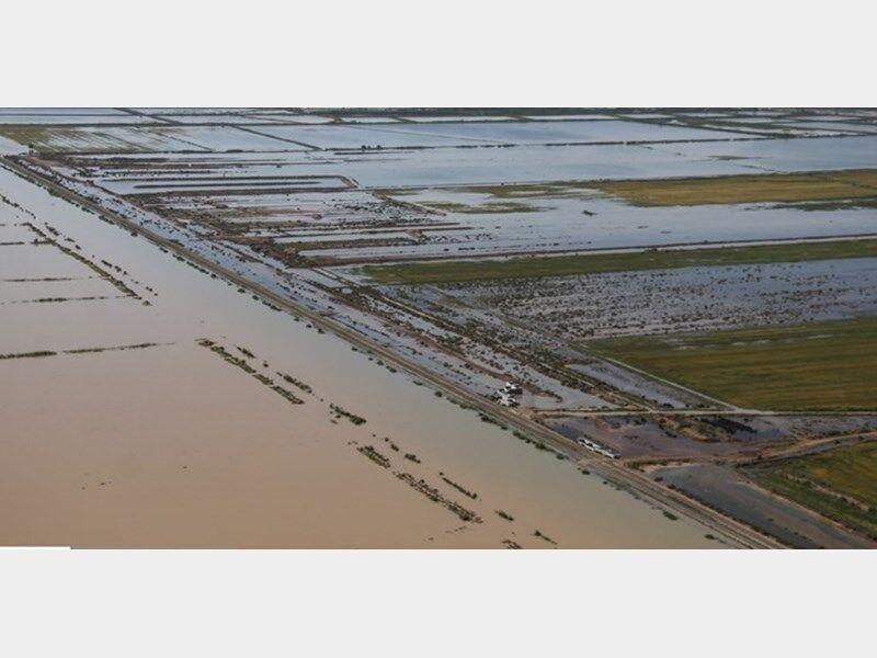 کمک بلاعوض به ۲۶۰ کشاورز سیلزده جویباری پرداخت شد