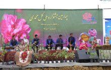 پایان جشنواره ملی گل محمدی در بخش دودانگه