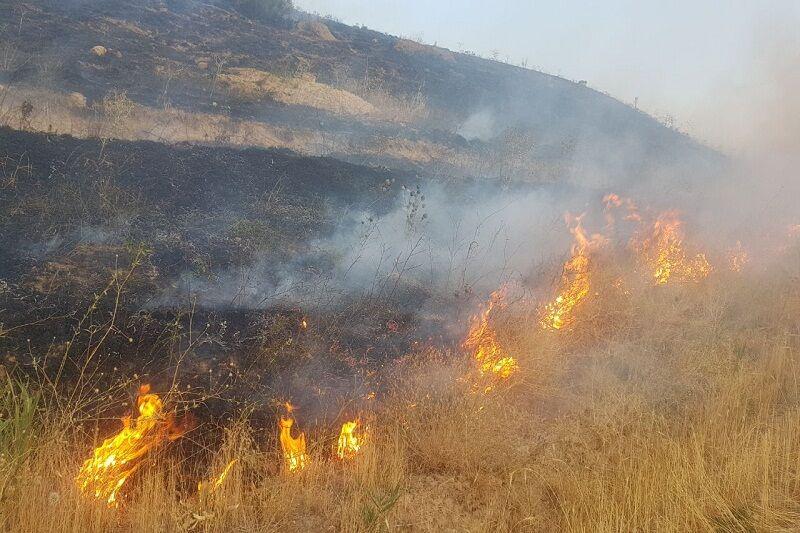 بخشی از مراتع دهستان جنت رودبار رامسر دچار آتش سوزی شد