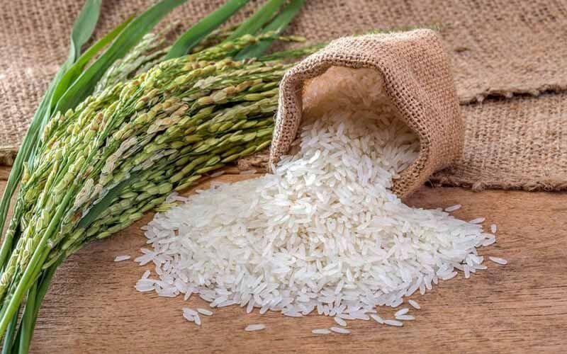 ممنوعیت فصلی واردات برنج همچنان برقرار است