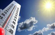 هوای مازندران تا پایان هفته گرم و آفتابی است/بهترین فرصت برای برداشت شالی