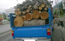 کشف 4 تن چوب جنگلي قاچاق در دودانگه + عکس