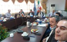 برق منطقهای مازندران شش طرح با دانشگاهها دارد