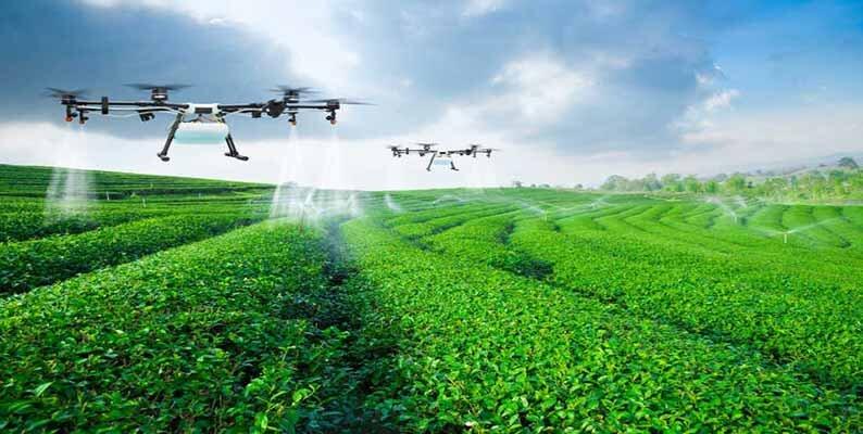 سیستم-زراعی-بسته؛-چرخهای-مناسب-برای-تقویت-خاک-است.jpg