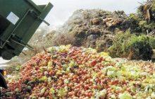 ضایعات بخش کشاورزی؛ قوز بالای قوز مشکل پسماند مازندران