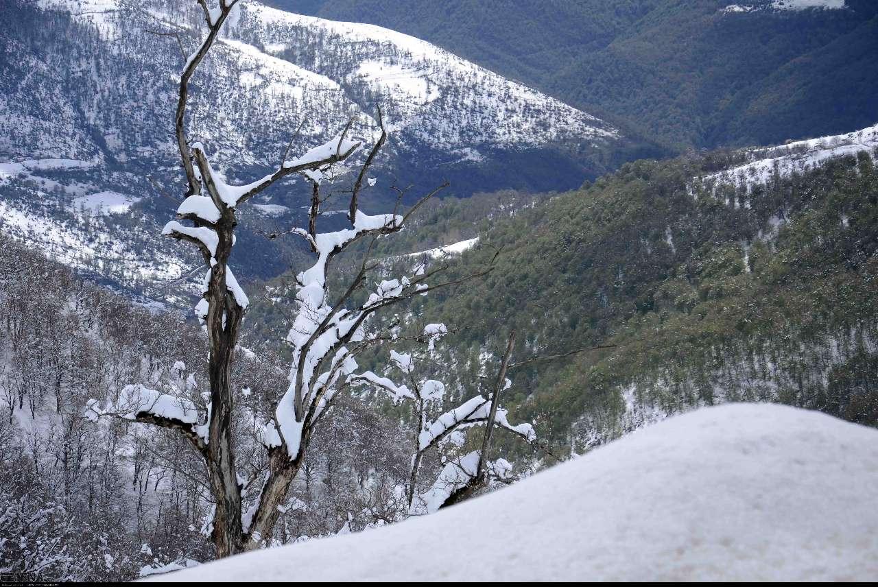 نخستین برف پاییزی ارتفاعات مازندران را سفیدپوش کرد