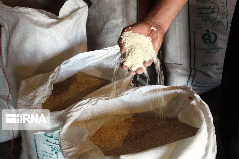 چشم-کشاورزان-مازندرانی-به-حاشیه-سود-بازار-برنج-تهران.jpg