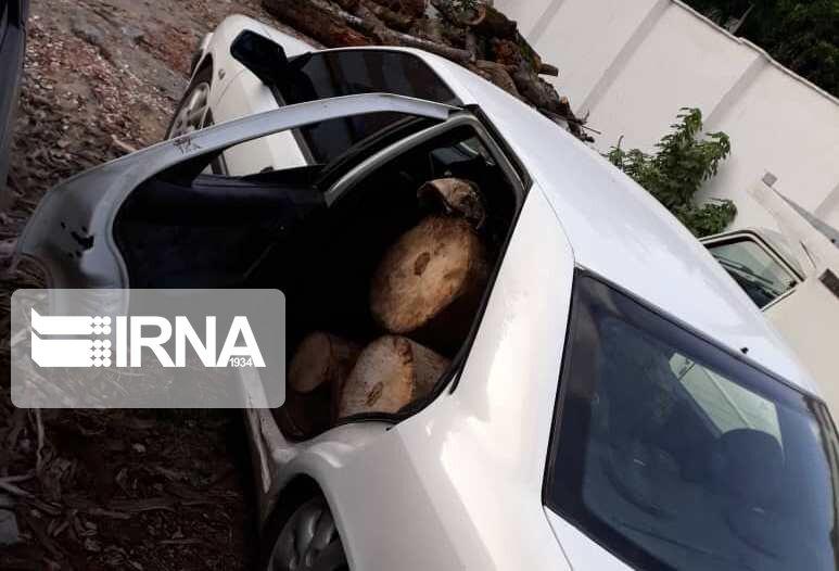 کوچ-قاچاق-چوب-در-مازندران-از-وانت-به-خودرو-سواری.jpg