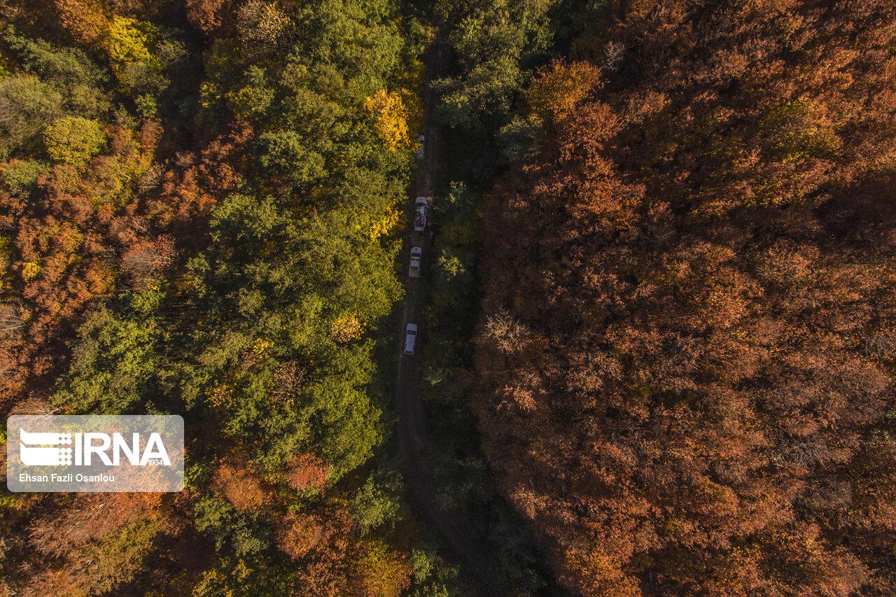 ایرنا - پاییز هیرکانی