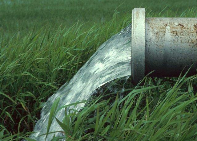 بخش کشاورزی ۸۵ درصد آب کشور را میبلعد