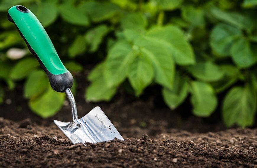 تولید کود خاک برگ، ظرفیتی مغفول مانده در مازندران