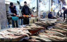 سفره ایرانی چشم انتظار ماهیان دریای خزر