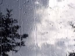 مازندران بارانی میشود - ایسنا