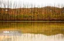 پاییز در مناطق «دودانگه» و «چهاردانگه» ساری