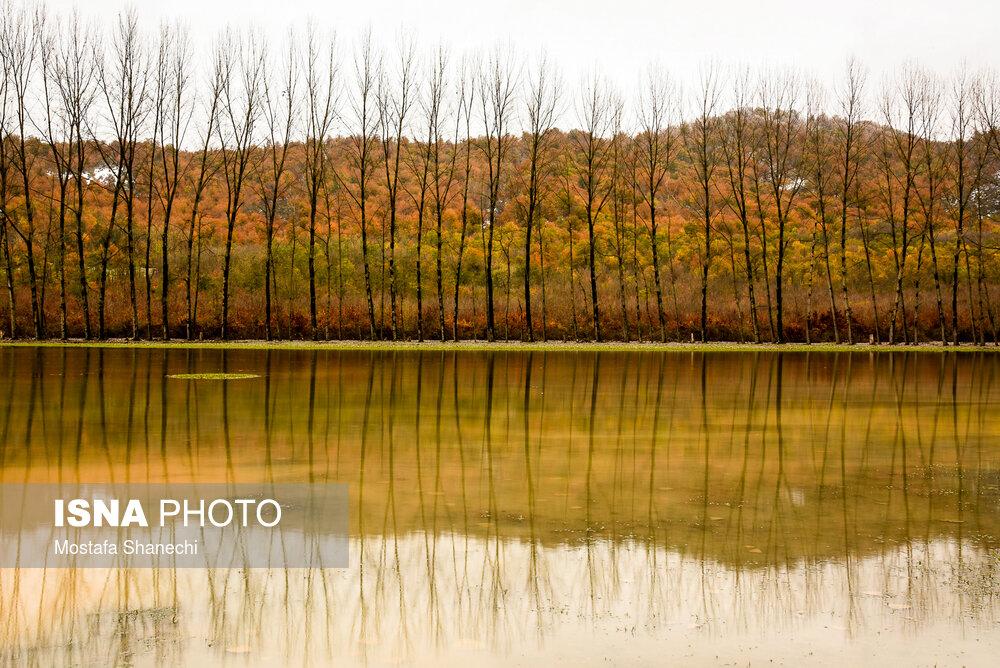 پاییز-در-مناطق-«دودانگه»-و-«چهاردانگه»-ساری.jpg