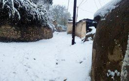 گزارش تصویری از اولین بارش برف پاییزی در چهاردانگه- 24 آبان1398