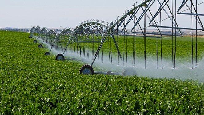 آبیاری نوین در ۲ هزار هکتار از باغها و مزارع مازندران
