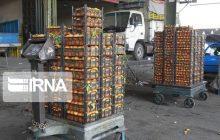 ۶۰ هزار تن مرکبات مازندران صادر شد