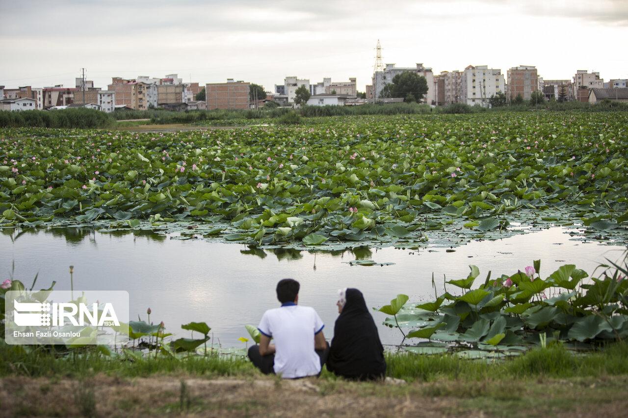 آبندانهای مازندران به میزبانی گردشگری کشورهای اکو اضافه میشوند