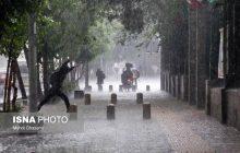 بیشترین میزان بارندگی در محمودآباد ثبت شد
