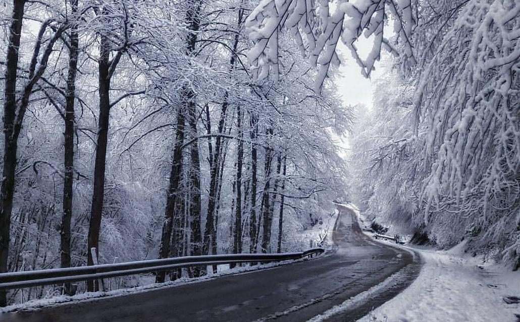 جاده عباس آباد- کلاردشت محروم از امکانات بین جادهای