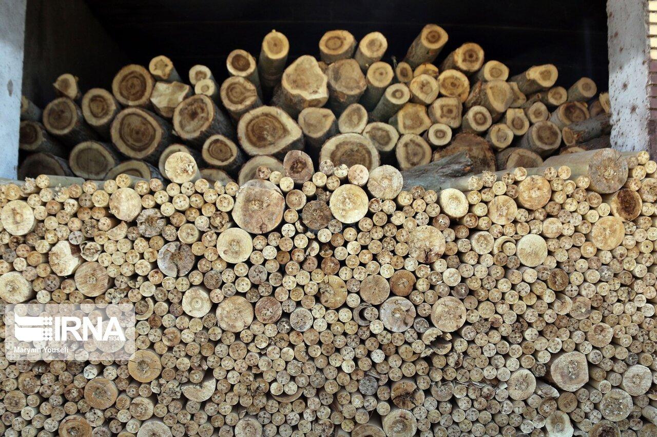 واردات-چوب-و-مساله-حفظ-جنگلها-در-مازندران.jpg