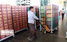 توزیع یکهزار تن سیب و پرتقال شب عید در مازندران