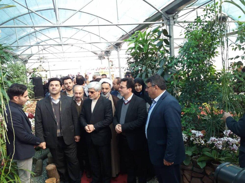 پنجمین جشنواره ملی ارکیده ایران در نوشهر آغاز بهکار کرد