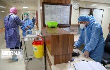 ۲۵ درصد بهبودیافتگان کرونای کشور در مازندران