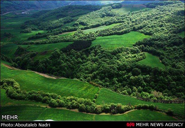 ثبت جنگلهای هیرکانی و عقبگرد دولتیها از ساحل