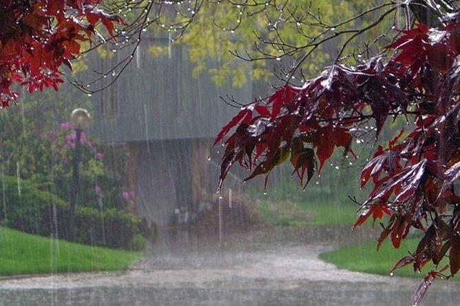 ۷۰ میلی متر باران در رامسر بارید