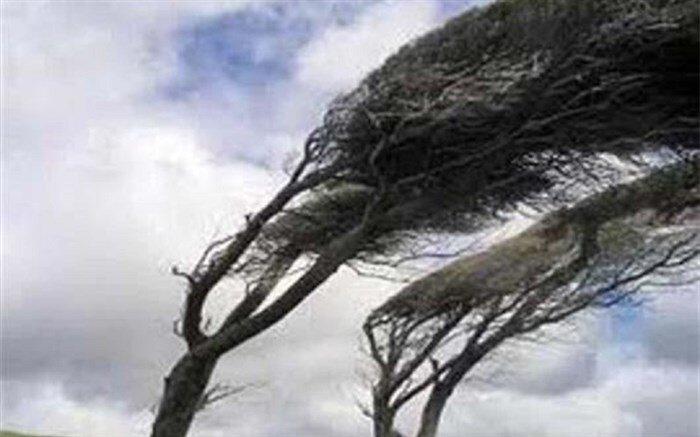 تندباد به بخش مسکن و برق در آمل خسارت زد/ قطع برق ۴۰ روستا