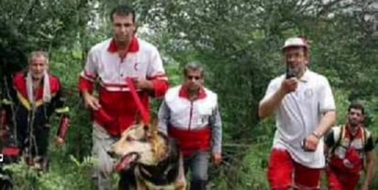 اعزام 4 تیم برای پیدا کردن خانم مفقود شده در جنگلهای چهاردانگه