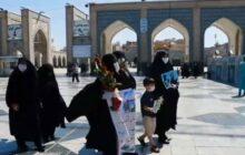 فیلم| از وصال تا طواف خانطومانیها در مشهدالرضا(ع)