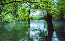 گزارش تصویری از دریاچه «چورت»