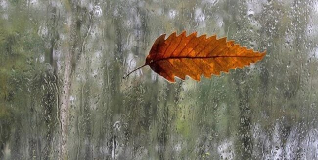 تداوم سامانه سرد و بارشی در آسمان مازندران