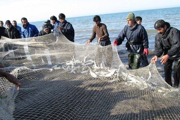 صید ماهیان استخوانی در مازندران آغاز شد