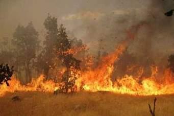 احتمال آتش در جنگلهای مازندران