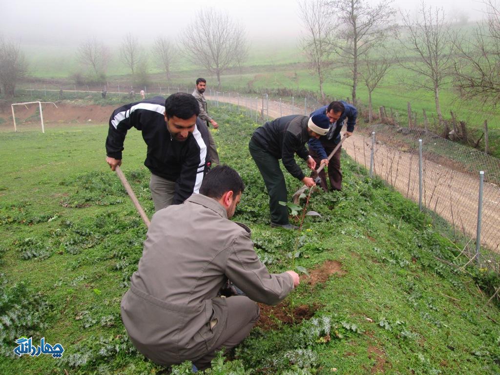 کاشت ۷۰۰ نهال در اردوگاه شهید توکلی روستای وناجم+تصاویر